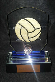 Crystal Octagon award for Netball